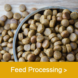 Anderson-feed-processing-2