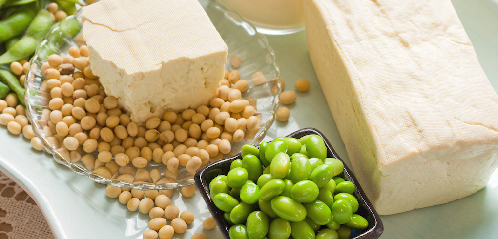 Blocks of tofu, shelled, and unshelled soybean on a table